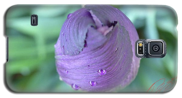 Iris After The Rain Vi Galaxy S5 Case