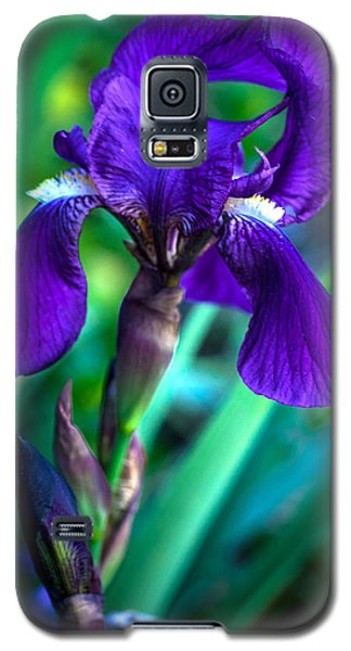 Iris Blooming Galaxy S5 Case