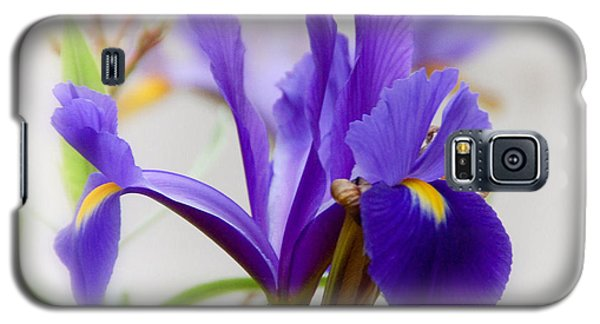 Galaxy S5 Case featuring the photograph Spring Iris by Elaine Manley