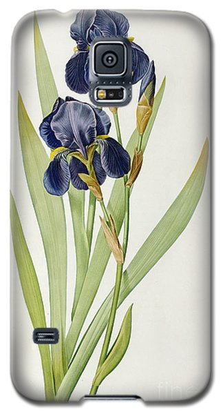 Iris Germanica Galaxy S5 Case by Pierre Joseph Redoute
