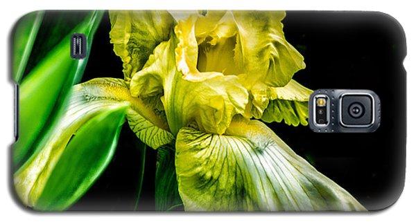 Iris In Bloom Galaxy S5 Case