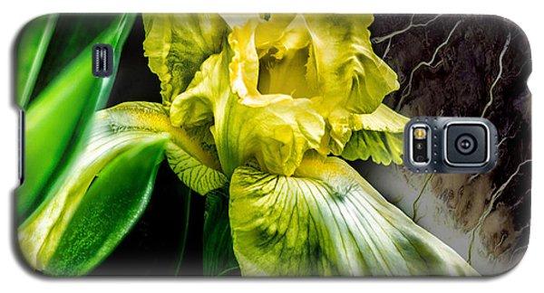 Iris In Bloom Two Galaxy S5 Case