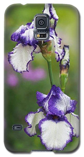 Iris Loop The Loop  Galaxy S5 Case by Rona Black