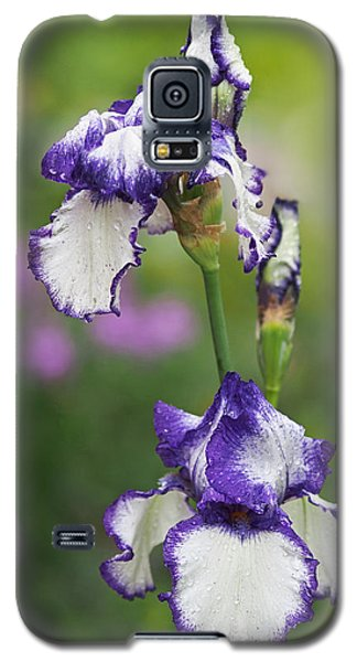 Iris Loop The Loop  Galaxy S5 Case by Rona Black
