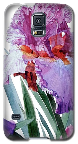 Watercolor Of A Tall Bearded Iris In Pink, Lilac And Red I Call Iris Pavarotti Galaxy S5 Case