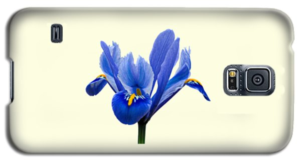 Galaxy S5 Case featuring the photograph Iris Recticulata Transparent Background by Paul Gulliver
