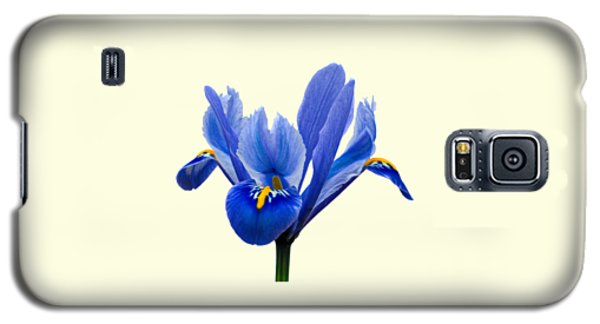 Iris Recticulata Transparent Background Galaxy S5 Case by Paul Gulliver