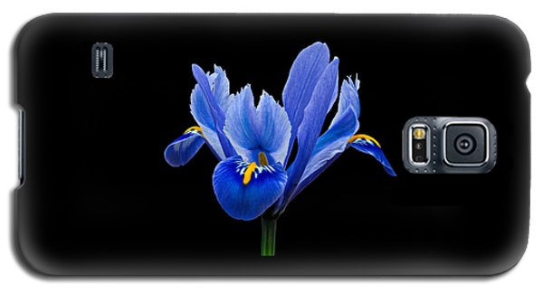 Iris Reticulata, Black Background Galaxy S5 Case