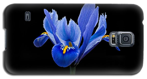 Galaxy S5 Case featuring the photograph Iris Reticulata, Black Background by Paul Gulliver