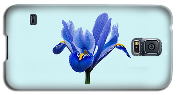 Iris Reticulata Blue Background Galaxy S5 Case