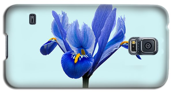 Galaxy S5 Case featuring the photograph Iris Reticulata Blue Background by Paul Gulliver