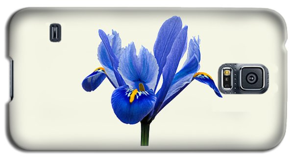 Iris Reticulata, Cream Background Galaxy S5 Case
