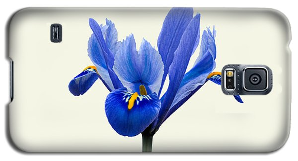 Galaxy S5 Case featuring the photograph Iris Reticulata, Cream Background by Paul Gulliver