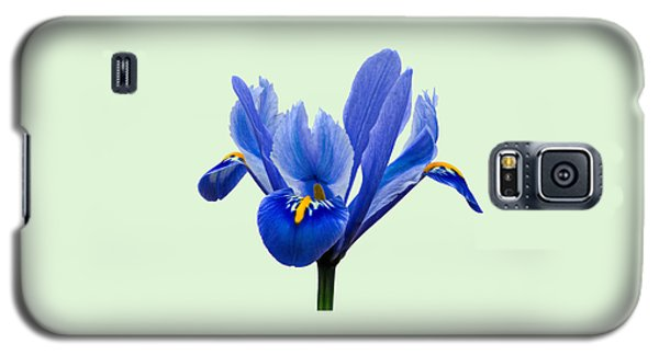 Iris Reticulata, Green Background Galaxy S5 Case