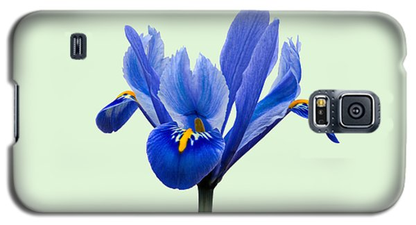 Galaxy S5 Case featuring the photograph Iris Reticulata, Green Background by Paul Gulliver