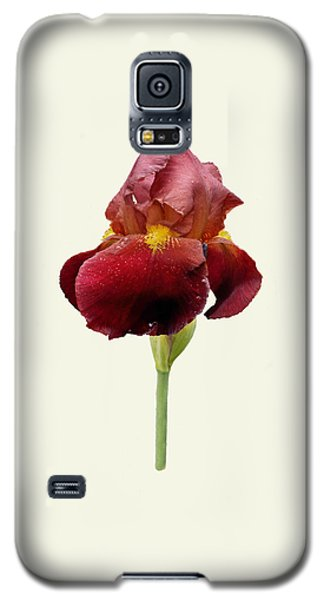 Iris Vitafire Cream Background Galaxy S5 Case