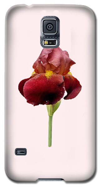 Galaxy S5 Case featuring the photograph Iris Vitafire Transparent Background by Paul Gulliver