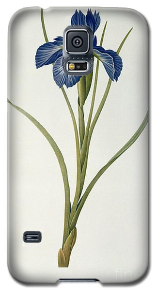Iris Xyphioides Galaxy S5 Case by Pierre Joseph Redoute