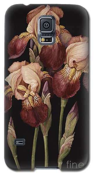 Irises Galaxy S5 Case by Jenny Barron
