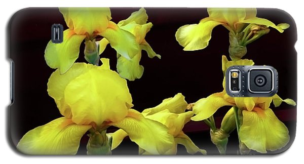 Galaxy S5 Case featuring the photograph Irises Yellow by Jasna Dragun