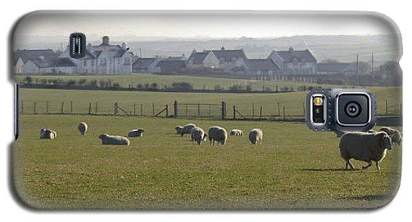 Irish Sheep Farm I Galaxy S5 Case
