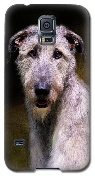Irish Wolfhound Portrait Galaxy S5 Case