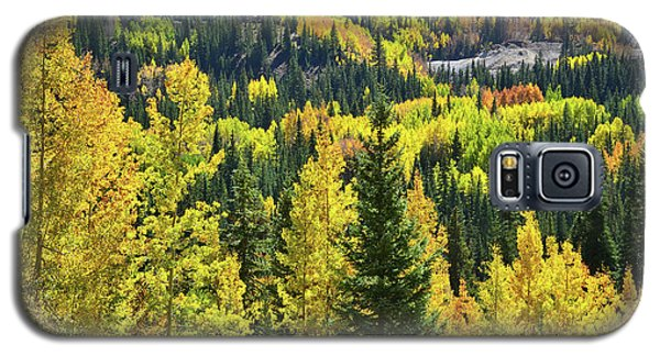 Galaxy S5 Case featuring the photograph Ironton Fall Color by Ray Mathis