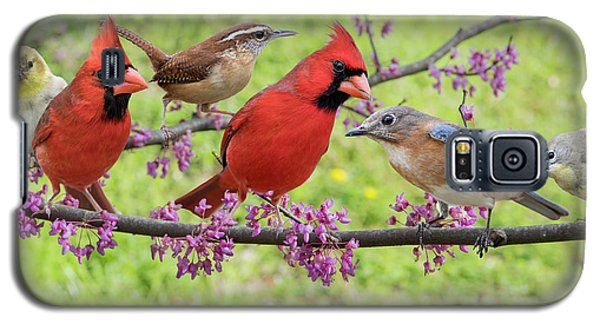Galaxy S5 Case featuring the photograph Is It Spring Yet? by Bonnie Barry