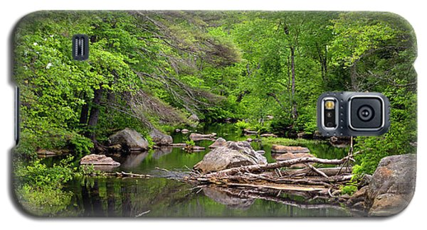 Isinglass River, Barrington, Nh Galaxy S5 Case