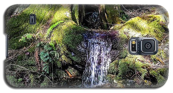 Galaxy S5 Case featuring the photograph Island Stream by William Wyckoff