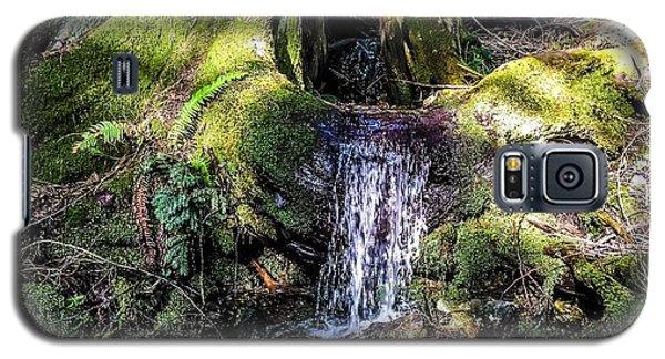 Island Stream Galaxy S5 Case by William Wyckoff