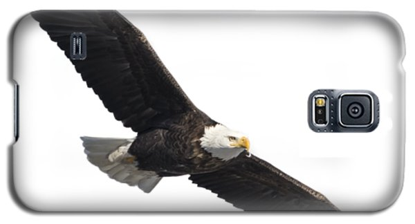 Isolated American Bald Eagle 2016-2 Galaxy S5 Case