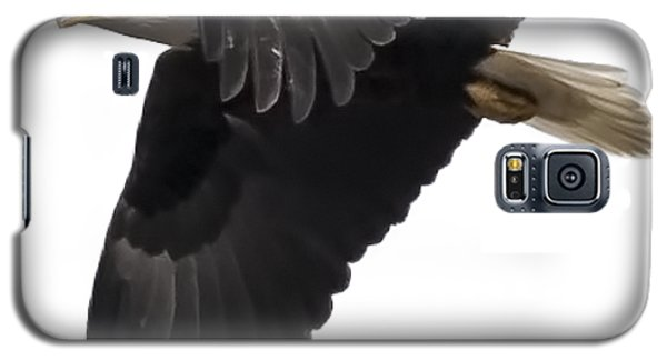 Isolated American Bald Eagle 2016-6 Galaxy S5 Case