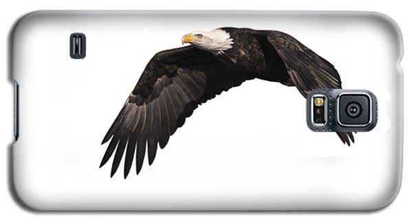 Galaxy S5 Case featuring the photograph Isolated Eagle 2017-1 by Thomas Young