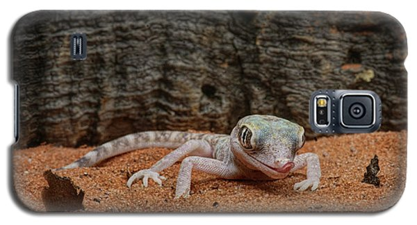 Galaxy S5 Case featuring the photograph Israeli Sand Gecko - 1 by Nikolyn McDonald