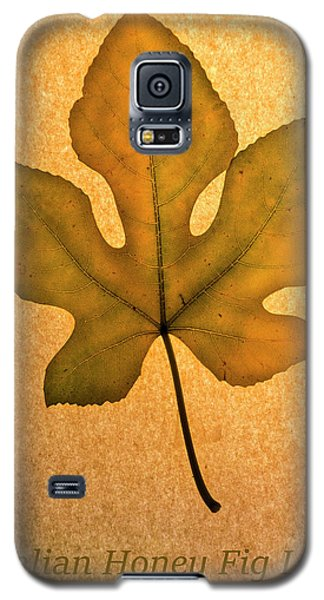 Galaxy S5 Case featuring the photograph Italian Honey Fig Leaf 4 by Frank Wilson