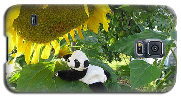 Galaxy S5 Case featuring the photograph It's A Big Sunflower by Ausra Huntington nee Paulauskaite
