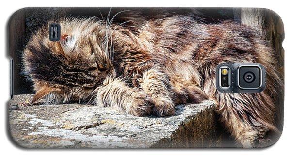 It's A Hard Life Galaxy S5 Case