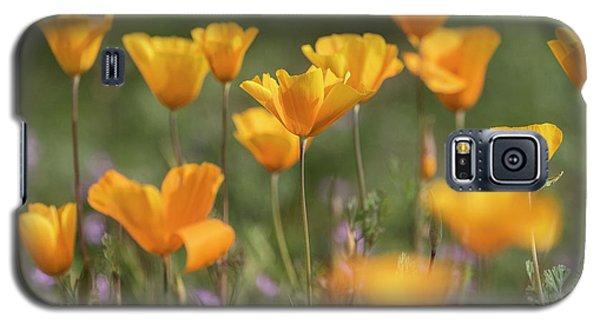Galaxy S5 Case featuring the photograph It's A Poppy Thing  by Saija Lehtonen