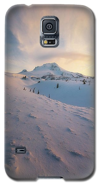 It's Not Spring Yet Galaxy S5 Case by Ryan Manuel