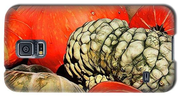 It's Pumpkin  Season Galaxy S5 Case