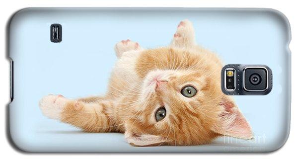 It's Sunday, I'm Feeling Lazy Galaxy S5 Case