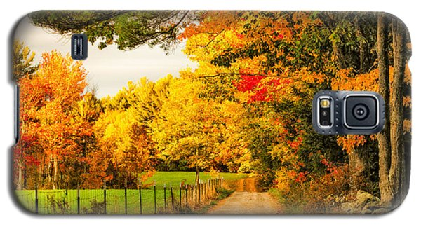 Galaxy S5 Case featuring the photograph I've Got Sunshine On A Cloudy Day by Robert Clifford