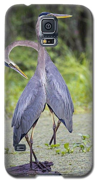 I've Got Your Back Galaxy S5 Case by Betsy Knapp