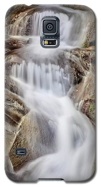 Galaxy S5 Case featuring the photograph Ivory And Bronze  by Az Jackson