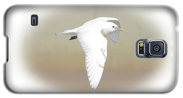 Ivory Gull Galaxy S5 Case
