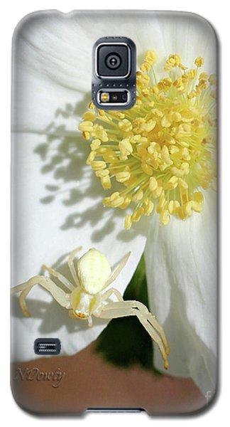Ivory Huntress Galaxy S5 Case