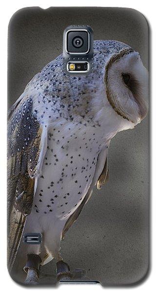 Ivy The Barn Owl Galaxy S5 Case