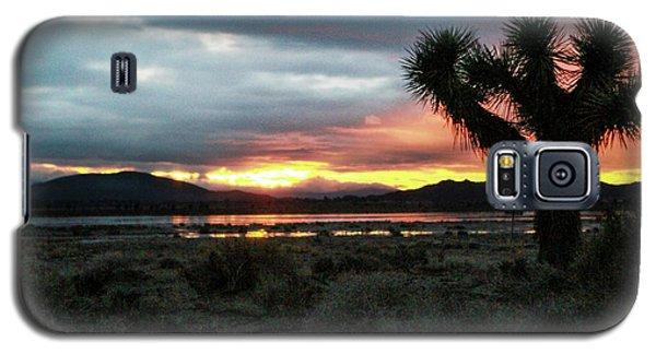 Jacob Tree Sunset - El Mirage Galaxy S5 Case