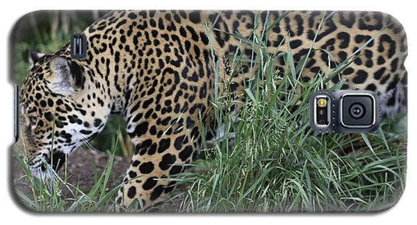 Galaxy S5 Case featuring the photograph Jag by Gary Bridger